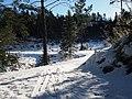 Small winter road - panoramio.jpg