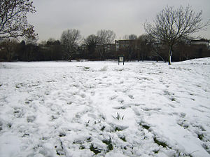 Snow in Neasden, London 1