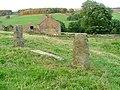 Stackyard Staddle Stones, Dale Head - geograph.org.uk - 55068.jpg