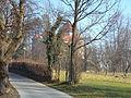 Stari Grad Dubovac 01011.JPG