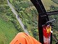 Starr-141014-2249-Caesalpinia decapetala-aerial view Hana Hwy-Kakipi Gulch Haiku-Maui (25247320125).jpg