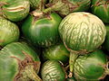 Starr 070730-7863 Solanum melongena.jpg