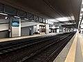 Stazione di Malpensa Aeroporto T1 - binari.jpg