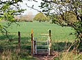 Stile, Offchurch Greenway - geograph.org.uk - 1268654.jpg