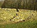 Stile in wall above Eller Carr Wood, Draughton - geograph.org.uk - 677019.jpg