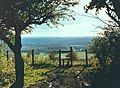 Stile onto North Downs Way - geograph.org.uk - 5504.jpg