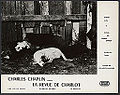 Still from Charles Chaplin - A Dog's Life - 1918 - First National Pictures - EYE FOT291515.jpg