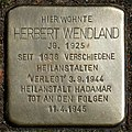 Stolpersteine Köln, Herbert Wendland (Petersbergstraße 23).jpg