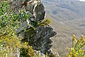 Stone Profile (17023077329).jpg