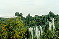Stone forest 1983-10.jpg