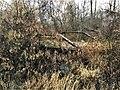 Stony Creek Bridge2 NRHP 99001467 Clinton County, MI.jpg