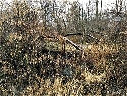 Stony Creek Michigan Car Crash