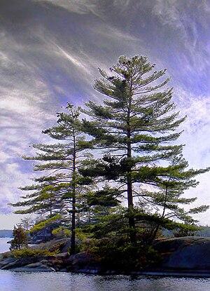 Stony Lake, Ontario, Canada, by P.B.