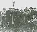 Students in the field to harvest potatoes.jpg