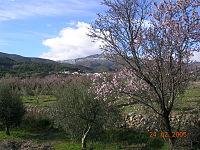 Suflí (Almería, España - 2005).jpg