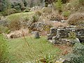 Sunken Garden - geograph.org.uk - 393293.jpg