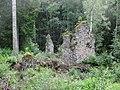 Svartnäs Nybruket ruin efter spiksmedja 3517.jpg