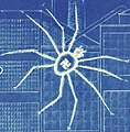 Swastika on spider art detail, Blueprint of Victory. Avoid the Black Widow of war production - NARA - 534556 - Sharpened (cropped).jpg