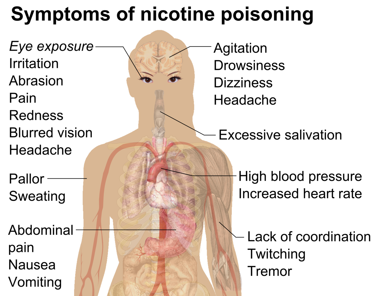 File:Symptoms of nicotine poisoning.png - Wikimedia Commons