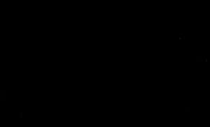 1979 Talladega 500 - Layout of Talladega Superspeedway