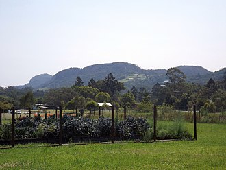 Ecovillage - Tallebudgera Mountain and a vegetable garden at the Currumbin Ecovillage in Queensland, 2015