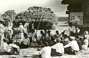 Romanian literacy campaign - Peasants on a collective farm in Livezeni village, Argeş County being read a newspaper in 1950