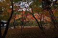 Tatsuno Shuentei05s4592.jpg