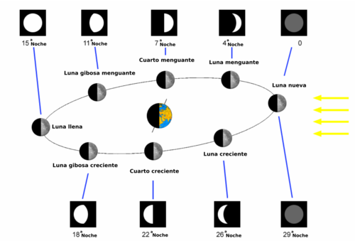 Fase Lunar Wikipedia La Enciclopedia Libre