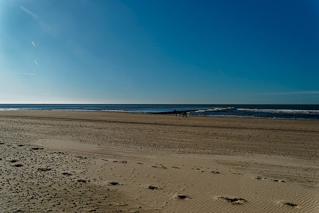 file:texel - beach between 'paal 12 & 15' - view sw - wikimedia