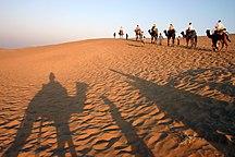 Rajasthan-Geografi-Fil:Thar Khuri