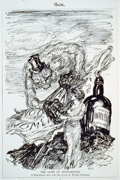 "Political cartoon criticizing the alliance between the prohibitionists and women's suffrage movements. The Genii of Intolerance, labelled ""Prohibition,"" emerges from his bottle. The Gennii of Intolerance - A Dangerous Ally.tif"