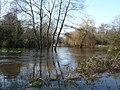 The River Blackwater in flood - geograph.org.uk - 1156407.jpg
