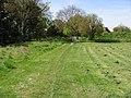 The Stour Valley Walk near Horton - geograph.org.uk - 783124.jpg