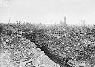 Фотография траншеи во Франции в окружении бомбежек и сломанных деревьев.