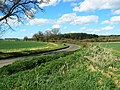 The road to Great Bedwyn - geograph.org.uk - 1246700.jpg