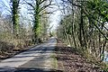 The road to the castle at Hanley - geograph.org.uk - 1144946.jpg
