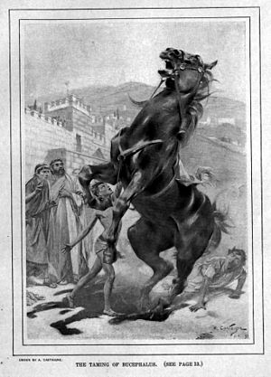 André Castaigne - The taming of Bucephalus—one of Castaigne's pieces on Alexander the Great (1898–99)