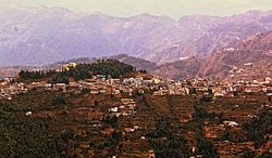 Theog Town View from Kanag Tibba.jpg