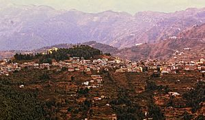 Theog - Image: Theog Town View from Kanag Tibba