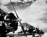 Thompson-Robbins Field - PT-17 Stearmans on Flight Line.jpg