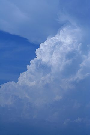 Thunderstorm - Warm, moist updraft from a thunderstorm associated with a southward-moving frontal boundary – taken from Texarkana, Texas looking north.