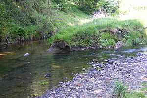 River Spodden - Image: Tong End Brook Spodden