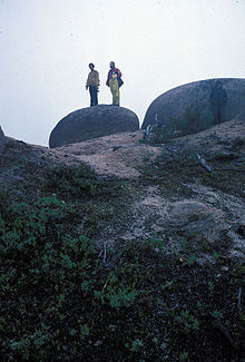 Tors on Colonels Mountain NB Canada2.jpg