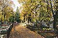 Torun cmentarz sw Jerzego - aleja.jpg