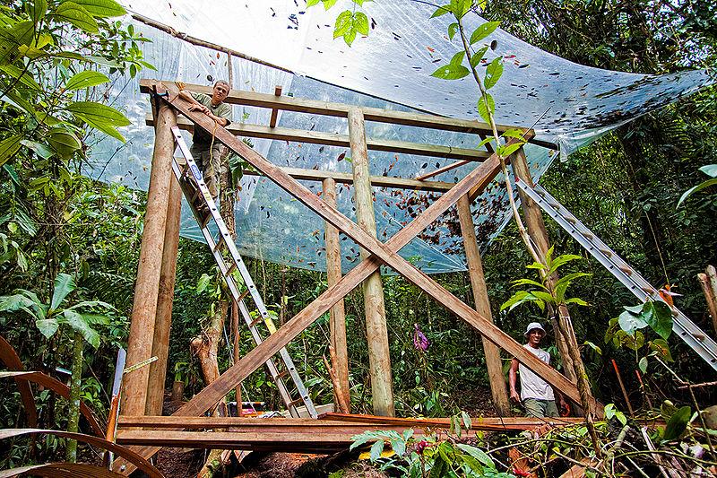 File:Tower blind building in Costa Rica.jpg