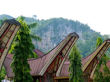 Traditional houses in Sulawesi, Indonesia; May 2009.jpg