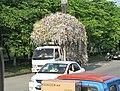 Transport par camion de rebuts déchiquetés, Chongqing.jpg