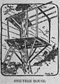 Treehouse (1904).jpg