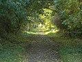 Trent Lane - geograph.org.uk - 1551588.jpg