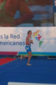 Triathlon at 2011 pan am.png